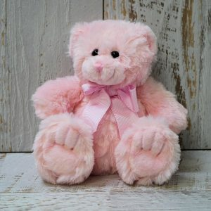 Pink Teddy Bear Medium