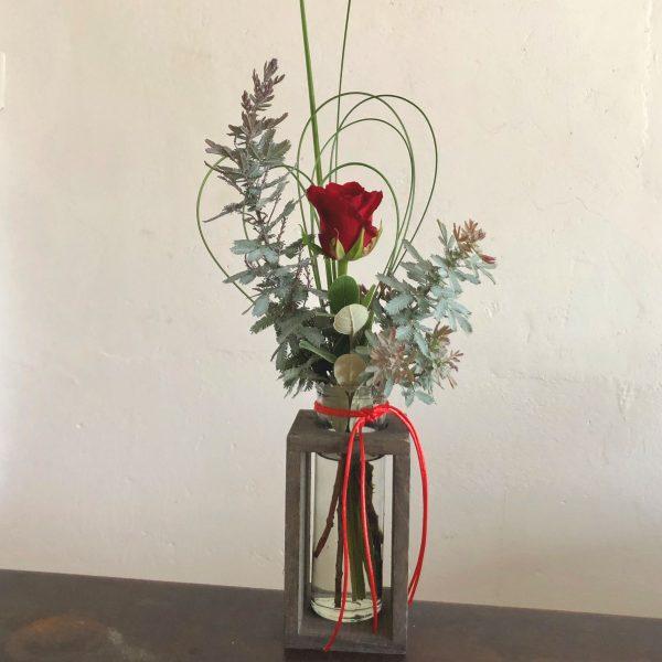 Single jar red rose